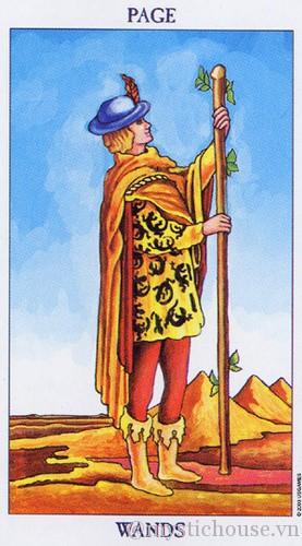 cảm nhận lá bài tarot page of wands