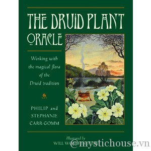 Druid Plant Oracle featured