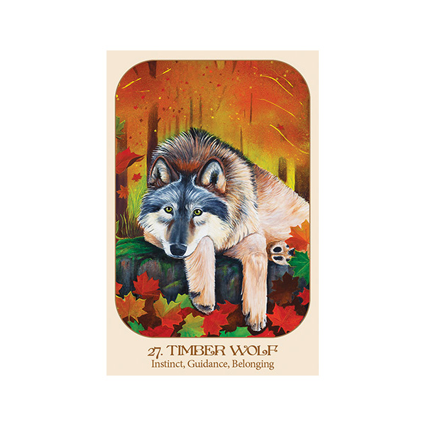 Animal Voices Oracle Connecting with Our Endangered Friends Cards 1