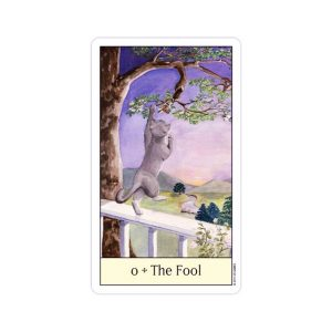 Cats-Eye-Tarot-1