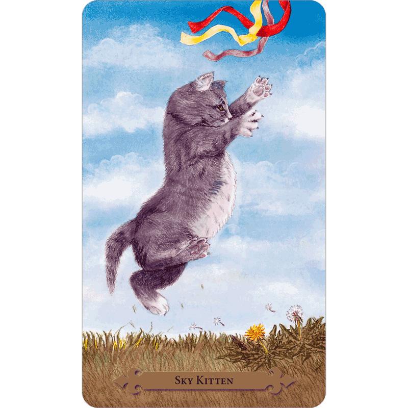 Mystical Cats Tarot 1