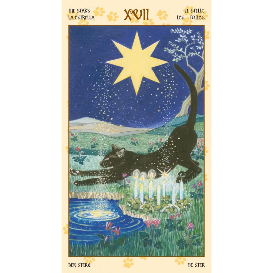 Tarot of Pagan Cats 10