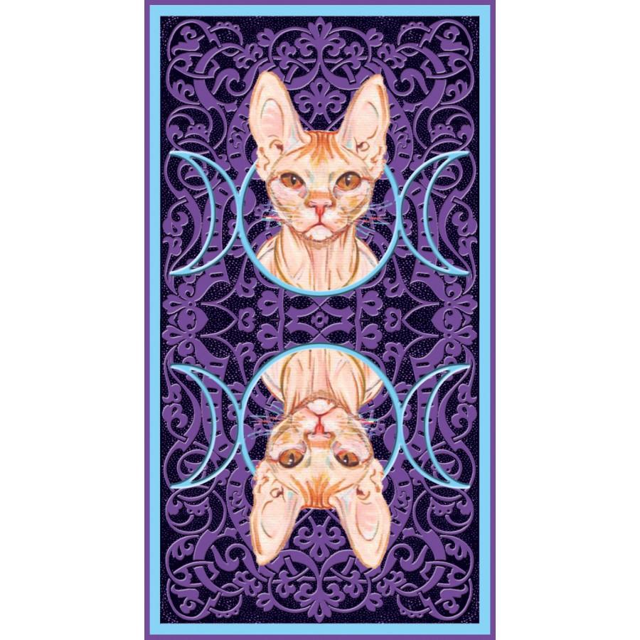 Tarot of Pagan Cats 12