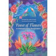 Power of Flowers 1
