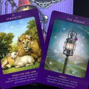 Animal Tarot Cards 3