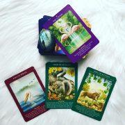 Animal Tarot Cards 8