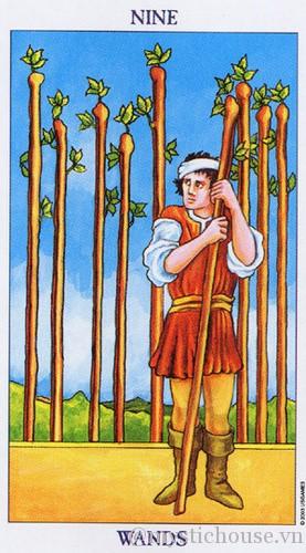 cảm nhận lá bài tarot nine of wands
