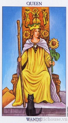 cảm nhận lá bài tarot queen of wands