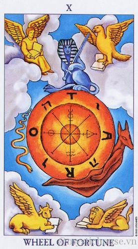 cảm nhận lá bài tarot the wheel of fortune