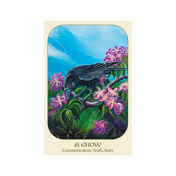 Animal Voices Oracle Connecting with Our Endangered Friends Cards 5