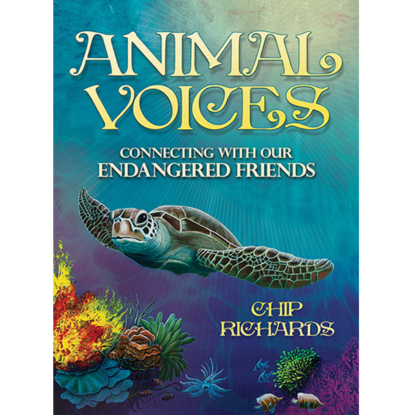 Animal Voices Oracle Connecting with Our Endangered Friends Cards