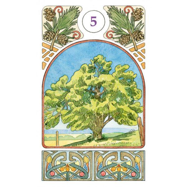 Art Nouveau oracle 3