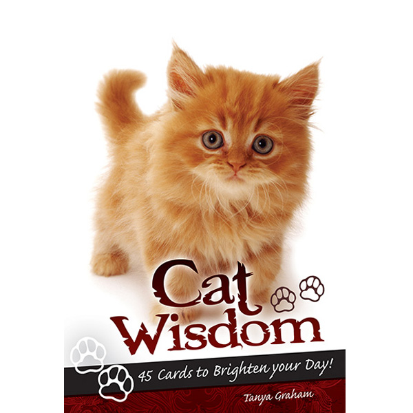 Cat Wisdom Cards 10