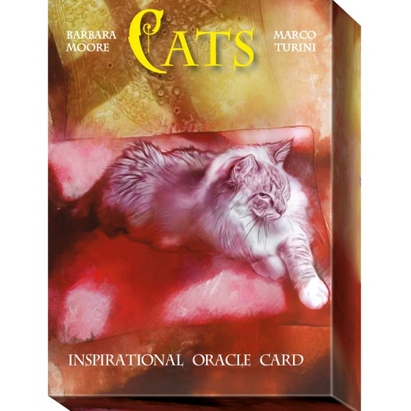 Cats Inspirational Oracle Cards 34
