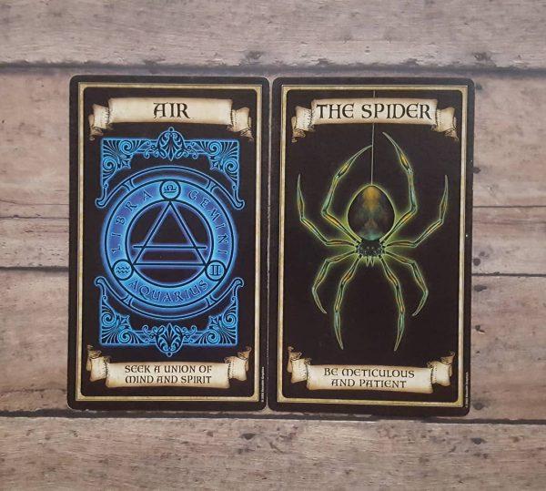 Madame Endora Fortune Cards 3