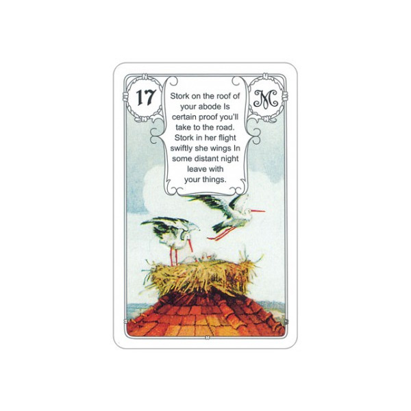 Mlle Lenormand Blue Owl 5