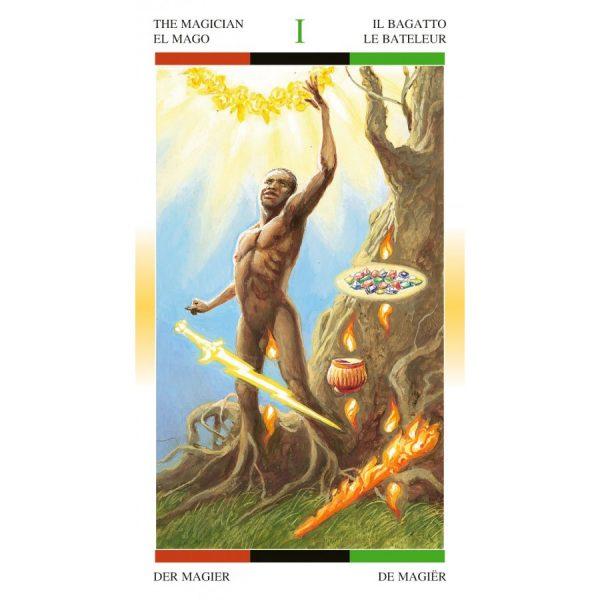 African American Tarot 5