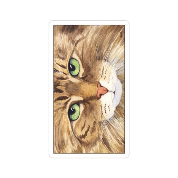 Cats-Eye-Tarot-7