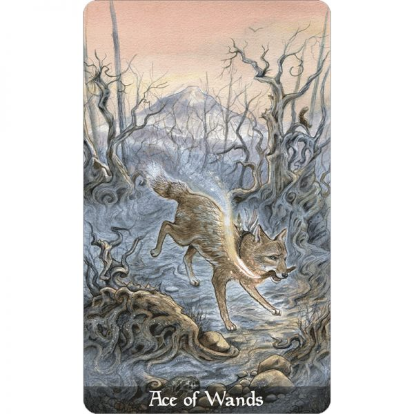 Fairy Tale Tarot 6