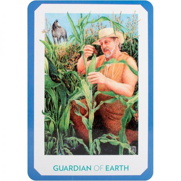 Gaian Tarot 17
