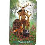 Green-Witch-Tarot-4