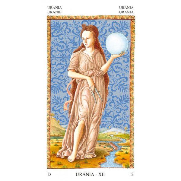 Mantegna Tarot 7