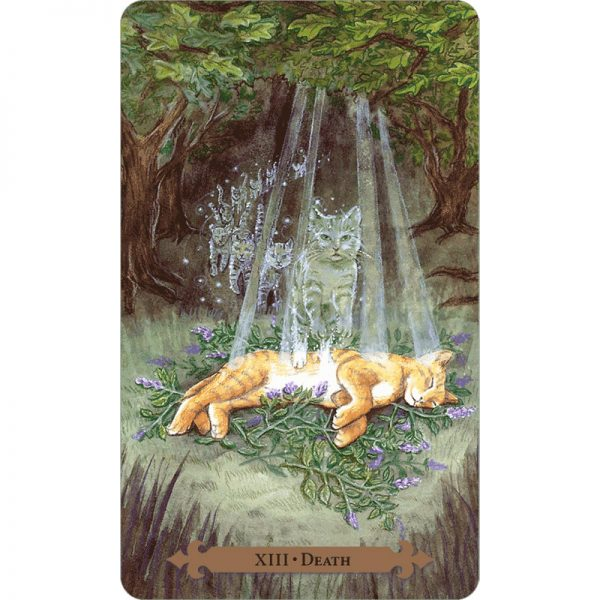 Mystical Cats Tarot 6
