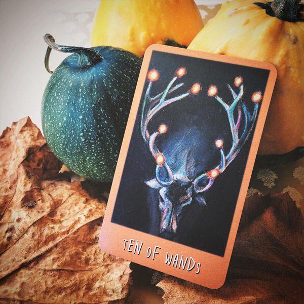 Raven's Prophecy Tarot 2