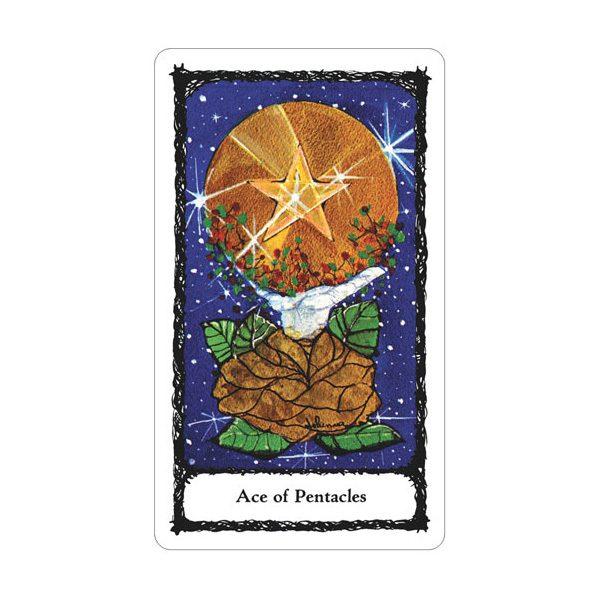 Sacred Rose Tarot 6