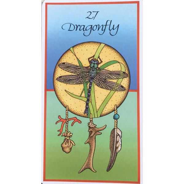 Medicine Cards 4