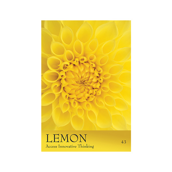 Secret Language of Colour Cards 3