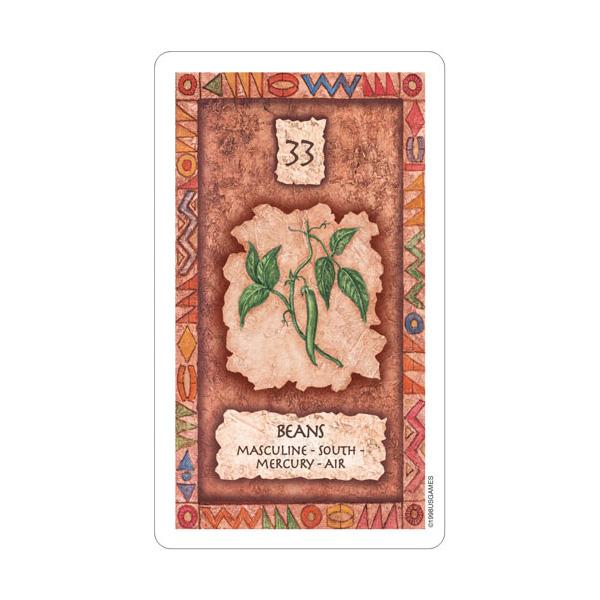 Shaman Wisdom Cards 2