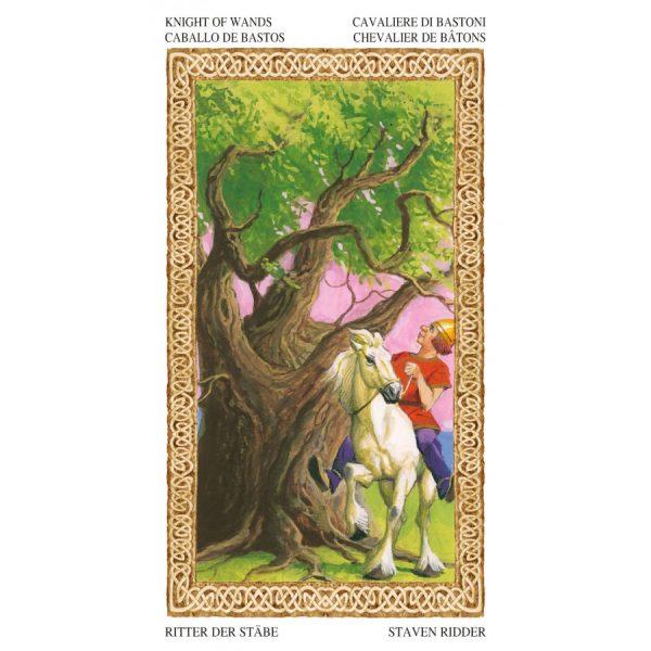 Tarot of Druids 3