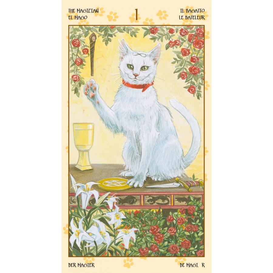 Tarot of Pagan Cats 5