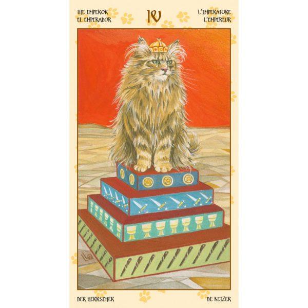 Tarot of Pagan Cats 6