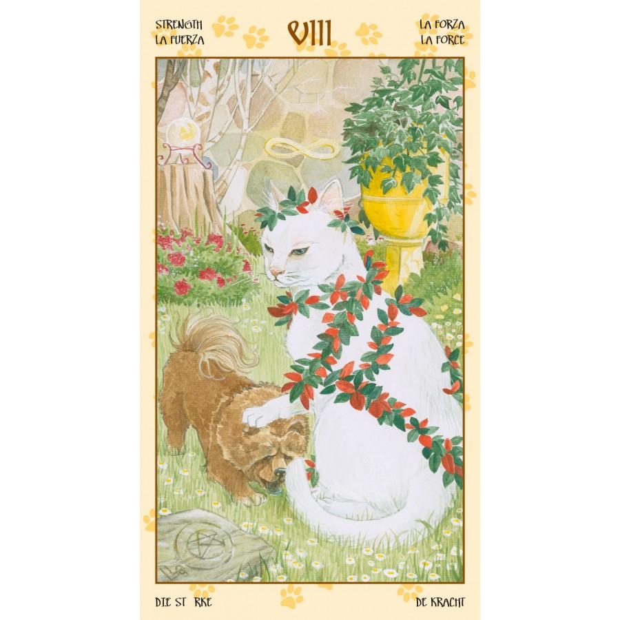 Tarot of Pagan Cats 7