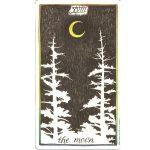 Wild-Unknown-Tarot-3