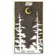 Wild-Unknown-Tarot-3