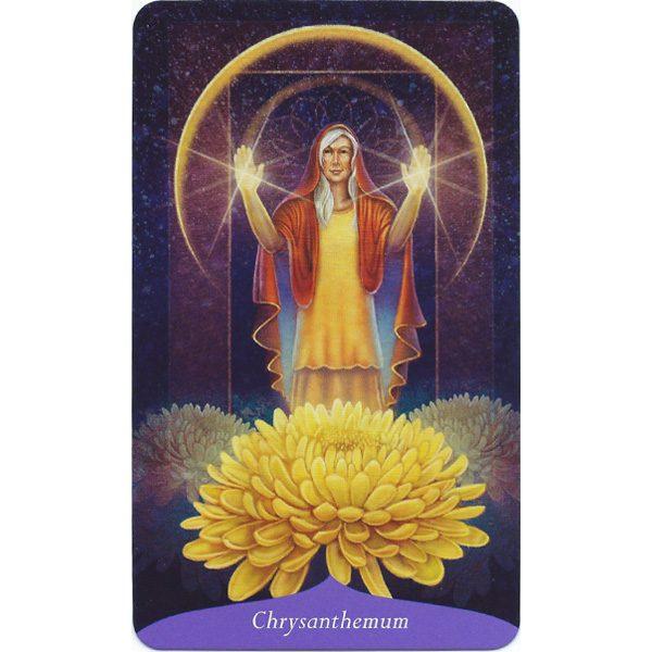 Magic of Flowers Oracle 4