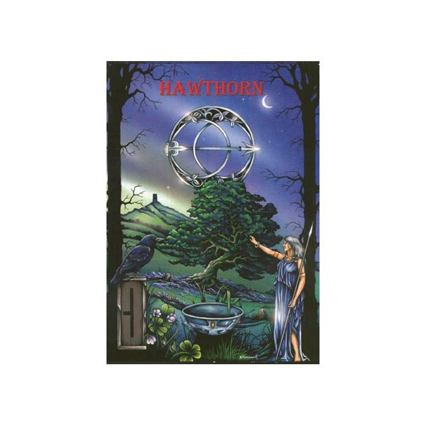 Ogham The Celtic Oracle 3