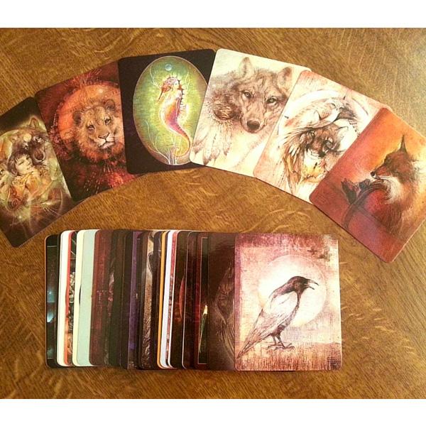 Animal Spirits Knowledge Cards 5