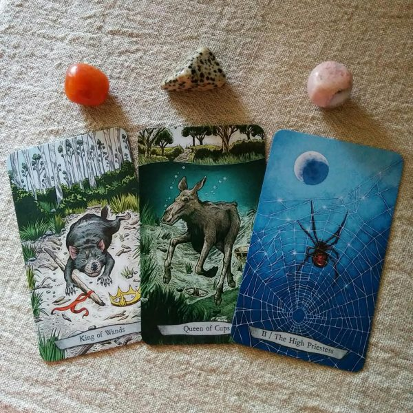 animal-totem-tarot-4