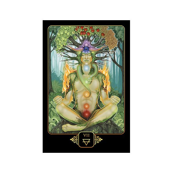 Dreams of Gaia Tarot 2