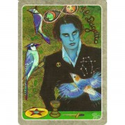 Secret Language of Birds Tarot 2