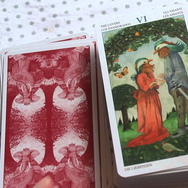 Tarot of the Animal Lords 11