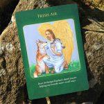archangel-raphael-healing-oracle-cards-8