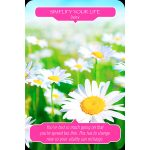 flower-therapy-oracle-cards-2