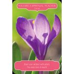 flower-therapy-oracle-cards-5