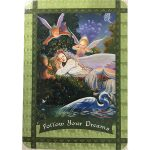 healing-with-the-fairies-oracle-cards-4