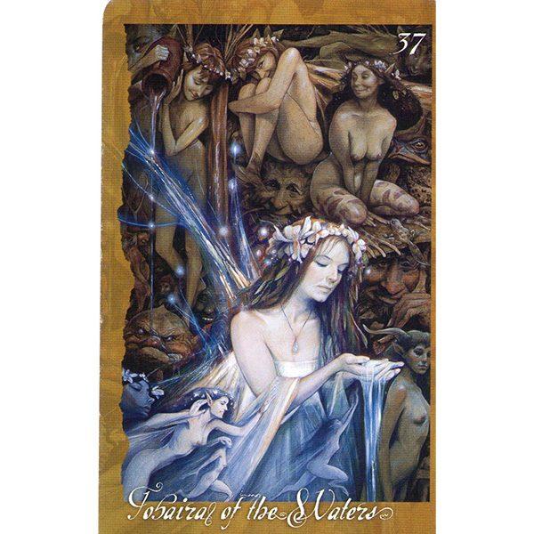 faeries-oracle-4